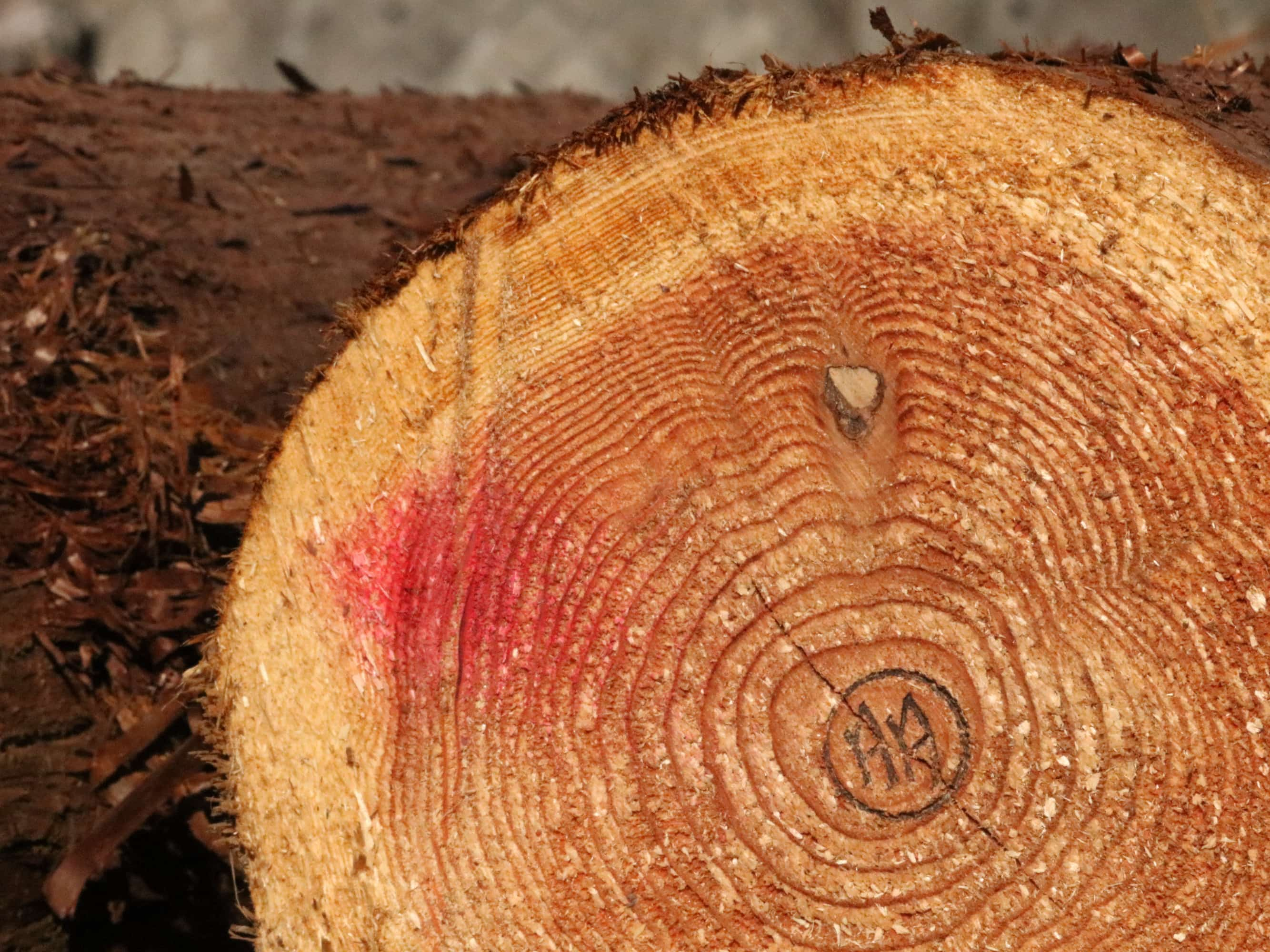 秋川木材協同組合