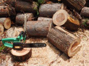 一般社団法人東京都木材団体連合会